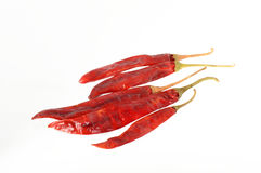 Pfeffer der roten Paprikas, getrocknete Paprikas Stockfoto