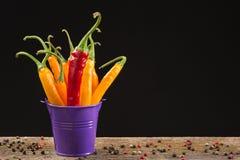Pfeffer des gelben und roten Paprikas in einem farbigen Eimer Stockbild