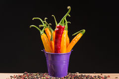 Pfeffer des gelben und roten Paprikas in einem farbigen Eimer Stockfotografie