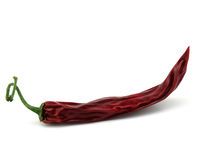 Pfeffer des roten Paprikas Stockfoto