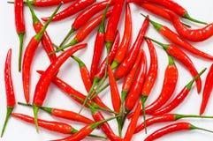 Pfeffer des roten Paprikas angeordnet stockfoto