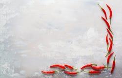 Pfeffer des roten Paprikas auf grauem konkretem Hintergrund Dieses ist Datei des Formats EPS8 Oberseite V Lizenzfreie Stockbilder