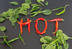 Pfeffer des roten Paprikas auf schwarzem Hintergrund stockfotografie