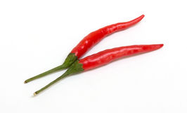 Pfeffer des roten Paprikas auf Weiß stockfoto