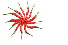 Pfeffer des roten Paprikas auf weißem Hintergrund Stockfotografie