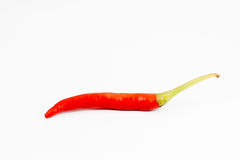 Pfeffer des roten Paprikas auf weißem Hintergrund Lizenzfreies Stockbild