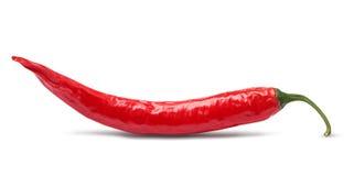 Pfeffer des roten Paprikas trennte lizenzfreies stockfoto