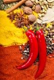 Pfeffer des roten Paprikas und gemischt von den verschiedenen Gewürzen stockbilder