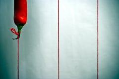 Pfeffer fliegt wie ein Ballon auf einer Zeichenkette Lizenzfreie Stockbilder