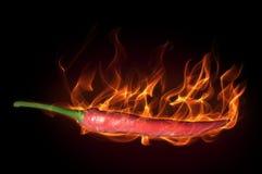 Pfeffer im Feuer Stockfotos