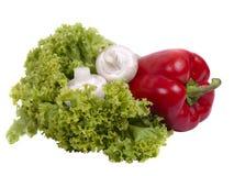 Pfeffer, Pilze und Kopfsalat Stockfotografie