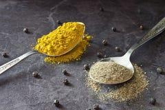 Pfeffer und Curry lizenzfreie stockfotos