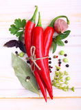 Pfeffer und Gewürze der roten Paprikas Stockfotografie