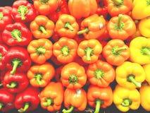 Pfeffer von verschiedenen Farben Lizenzfreies Stockfoto