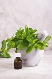 Pfefferminzöl und frische tadellose Blätter über Holztisch Stockbilder