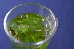 Pfefferminz-Tee lizenzfreies stockbild
