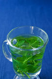 Pfefferminz-Tee stockbild