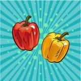 Pfeffern Sie Lebensmittelgemüsepunkt-Hintergrundvektor eco Karikatur der Art der Paprikapop-art komische Hand gezeichneten Stockfoto