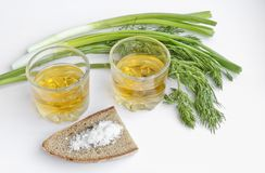 Pfefferwodka in zwei transparenten Gläsern, in den Frühlingszwiebeln, im Dill, im Roggenbrot und im groben Salz - Stillleben lizenzfreies stockbild