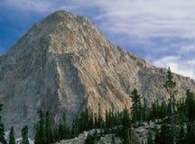 Pfeifferhorn в уединённой пиковой глуши, следе озер красная сосн, ряде Уосата, Юте Стоковые Фотографии RF