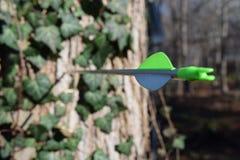 Pfeil fest in einem Baum lizenzfreies stockfoto