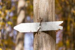 Pfeilzeichen auf einem Baum Stockfotografie
