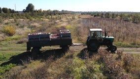?pfel arbeiten Traktor im Garten stock footage