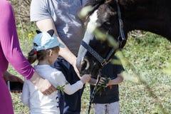 Pferd auf der Stra?e das Kind zieht das Pferd ein Eltern steuern den Prozess stockbild