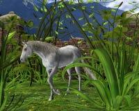 Pferd auf Natur Lizenzfreie Stockbilder