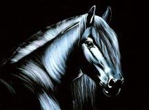 Pferd auf Samt Stockfotografie