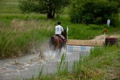 Pferd, das durch Wasser in einem Cross Country-Rennen läuft Lizenzfreie Stockfotografie