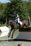 Pferd, das in einen Wettbewerb läuft Lizenzfreie Stockbilder