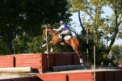 Pferd, das in einen Wettbewerb läuft Lizenzfreies Stockbild