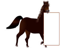 Pferd, das Fahne hält Stockfoto