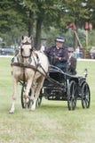 Pferd, das Konkurrenz Dressage antreibt Lizenzfreie Stockfotografie