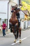 Pferd, das mit Reiter in Brasov, Rumänien aufrichtet Lizenzfreie Stockfotos