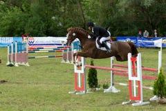 Pferd, das in Wettbewerb von Hindernissen läuft Stockfotos