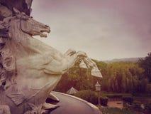 Pferd in der Natur Stockbilder