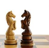 Pferd des Schachs zwei Stockfotografie