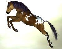 Pferd dunkelbraun mit einer blauen Mähne Lizenzfreies Stockbild