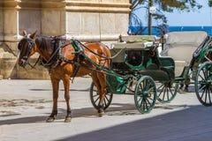 Pferd gezeichneter touristischer Wagen oder Warenkorb Stockfotos