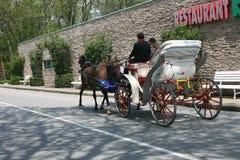 Pferd gezeichneter Wagen Lizenzfreie Stockbilder