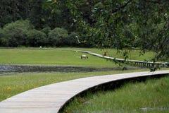 Pferd grasen in Shangri-La Lizenzfreies Stockfoto