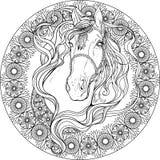 Pferd im Rahmen von Florenelementen Farbtonseite Lizenzfreie Stockfotos