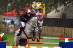 Pferd im Regen lizenzfreie stockfotos