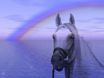 Pferd im Regenbogen Lizenzfreie Stockfotos
