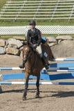 Pferd mit dem Reiter, der einen Sprung abschließt Stockfotografie