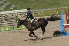 Pferd mit dem Reiter, der einen Sprung abschließt Stockbild