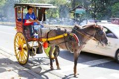 Pferd mit dem Wagen herein Intramuros stockbild