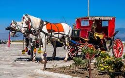 Pferd mit einem Wagen Lizenzfreies Stockfoto